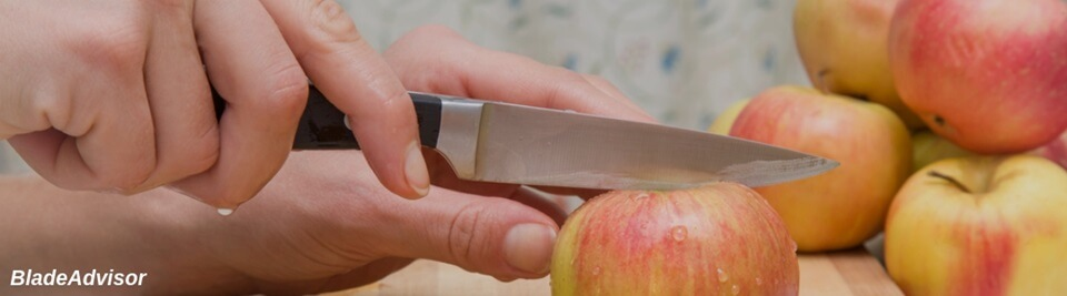 Best Paring Knife Feature Image