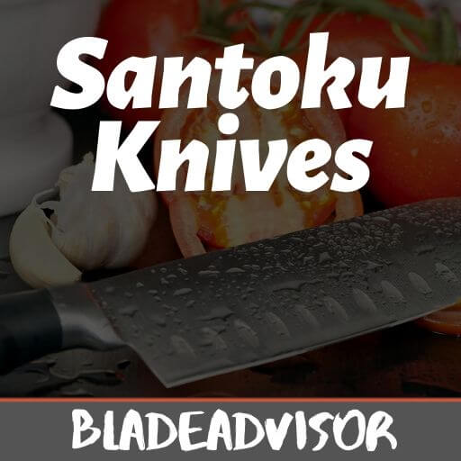 Best Santoku Knives 2020