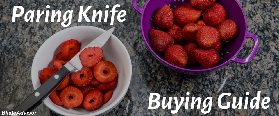 Best Paring Knife Buying Guide