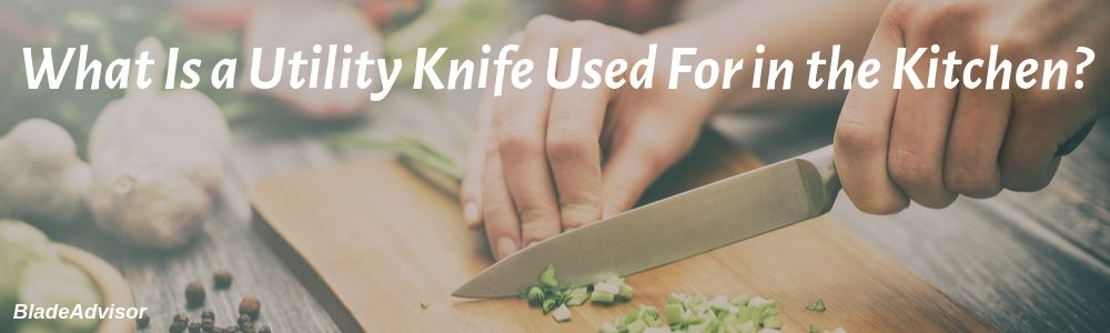 Utility Knife Uses in the Kitchen & Do I Really Need the Best One?
