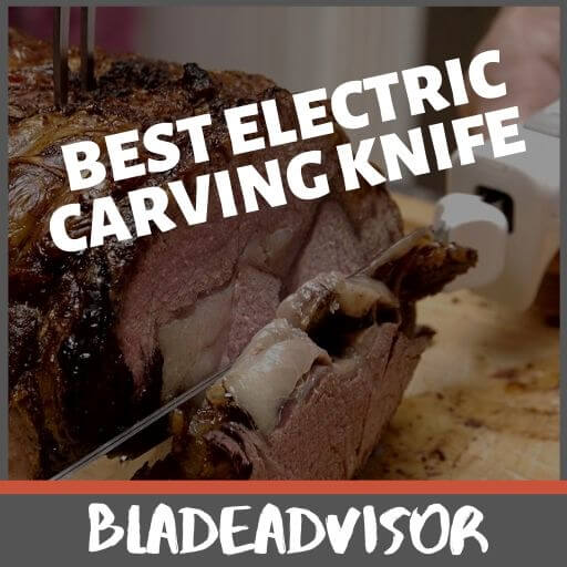 10 Best Electric Carving Knife Reviews:  We Rate, You Choose